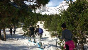 raquetas de nieve en Barrosa